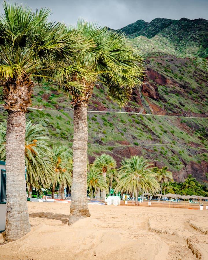 Teresitas beach in Tenerife. Canary Islands, Spain stock photography