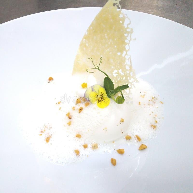 Terine excelente do queijo do prato com espuma e a batata frita parmezan imagens de stock