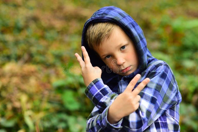 Terloops koel Koele jongen Kleine jongen in toevallige hoodie Het kleine kind toont het beledigen gebaar Im een beetje van een sl stock foto
