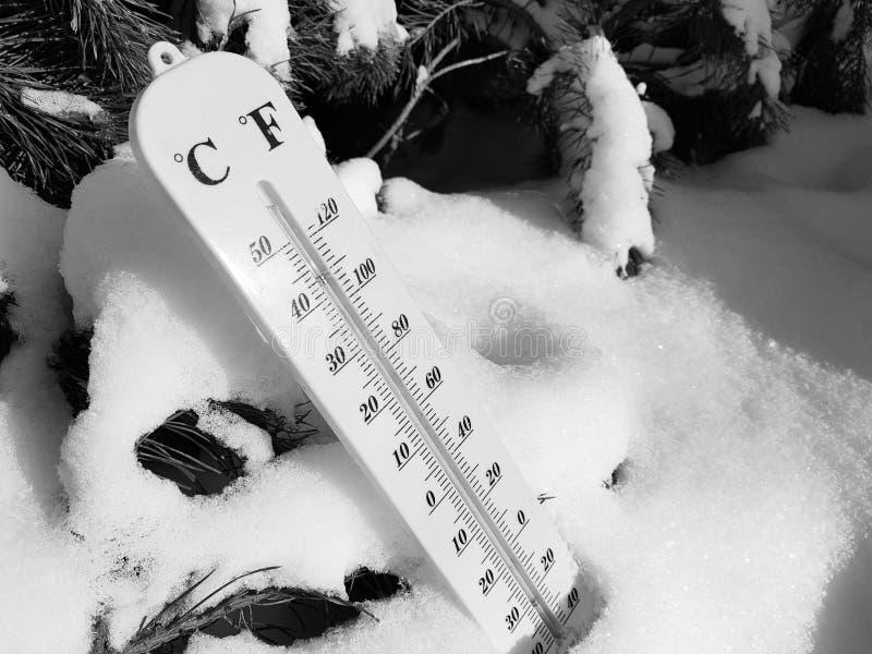 Termómetro de la calle con una temperatura de Celsius y de Fahrenheit en la nieve al lado de un pino joven foto de archivo libre de regalías