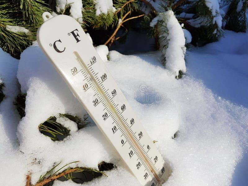 Termómetro de la calle con una temperatura de Celsius y de Fahrenheit en la nieve al lado de un pino joven imagenes de archivo