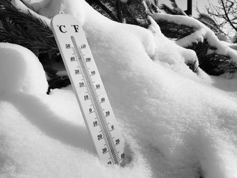 Termómetro de la calle con una temperatura de Celsius y de Fahrenheit en la nieve al lado de un pino joven imagen de archivo