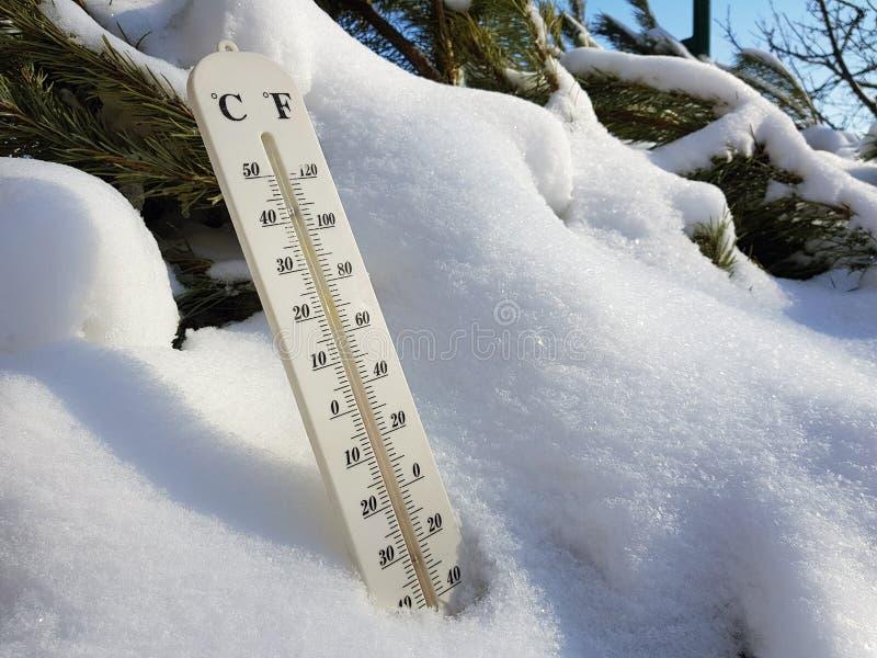 Termómetro de la calle con una temperatura de Celsius y de Fahrenheit en la nieve al lado de un pino joven fotos de archivo libres de regalías