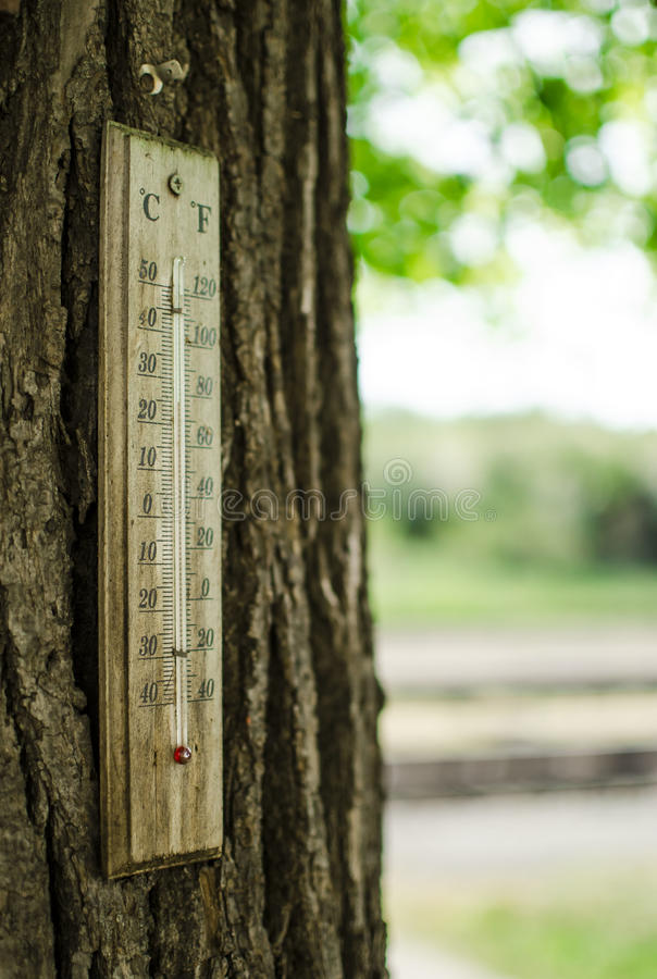Termómetro en un tronco de árbol imagenes de archivo