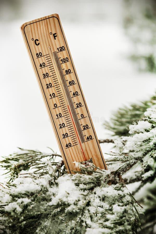 Termômetro com temperaturas abaixo de zero no ramo de uma árvore fotos de stock royalty free