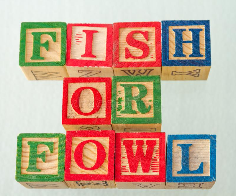 The term fish or fowl visually displayed. On a white background using colorful wooden blocks image in landscape format stock images