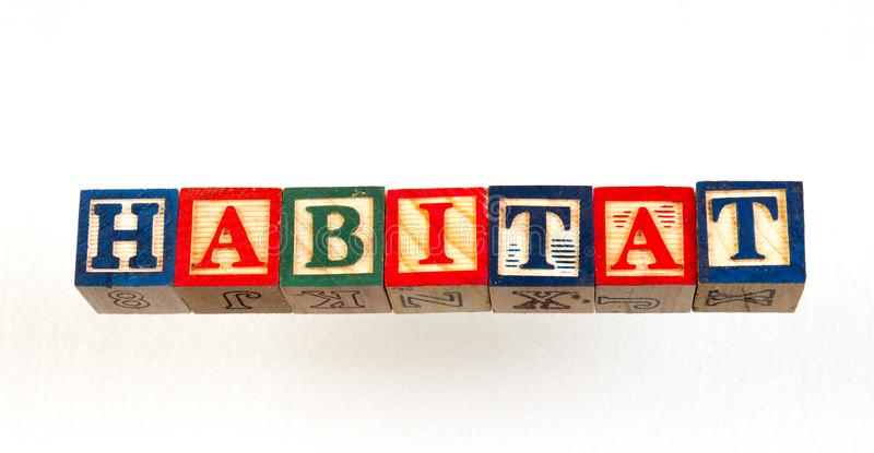 The term habitat visually displayed. Using colorful wooden toy blocks on a white background image with copy space in landscape format stock images