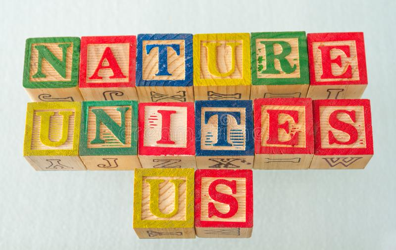 The term nature unites us visually displayed. On a white background using colorful wooden blocks image in landscape format royalty free stock image
