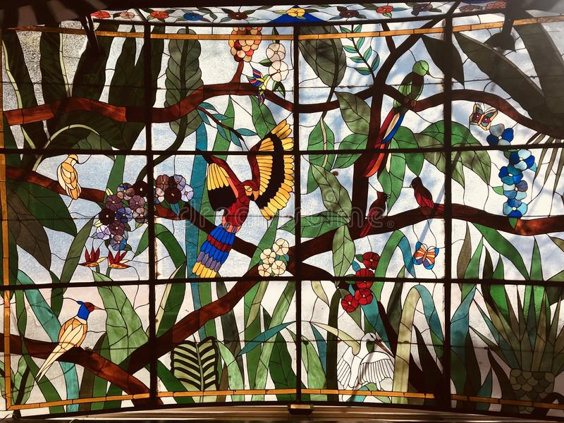 A beautiful stained glass window with many colorful birds and animals stock images