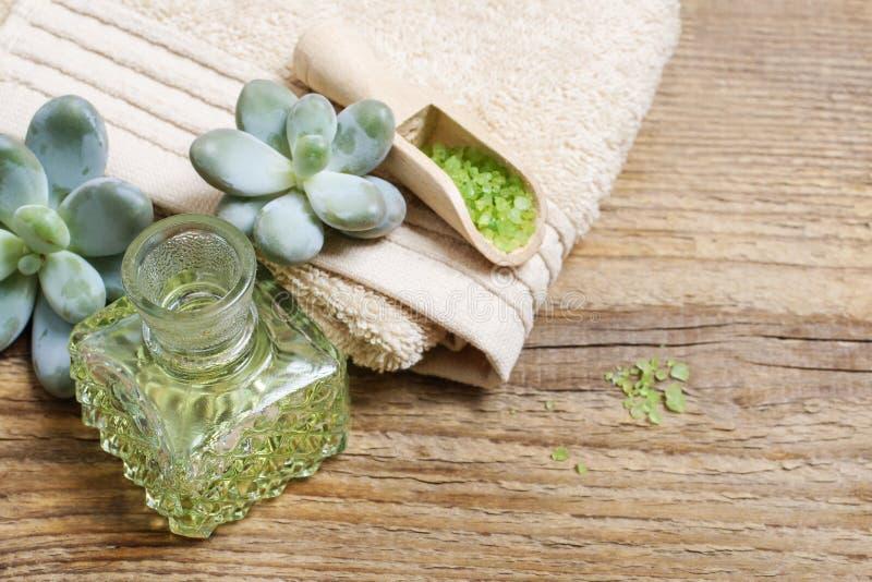 Termas ajustados: sal do mar verde, sabão líquido e plantas da planta carnuda imagem de stock