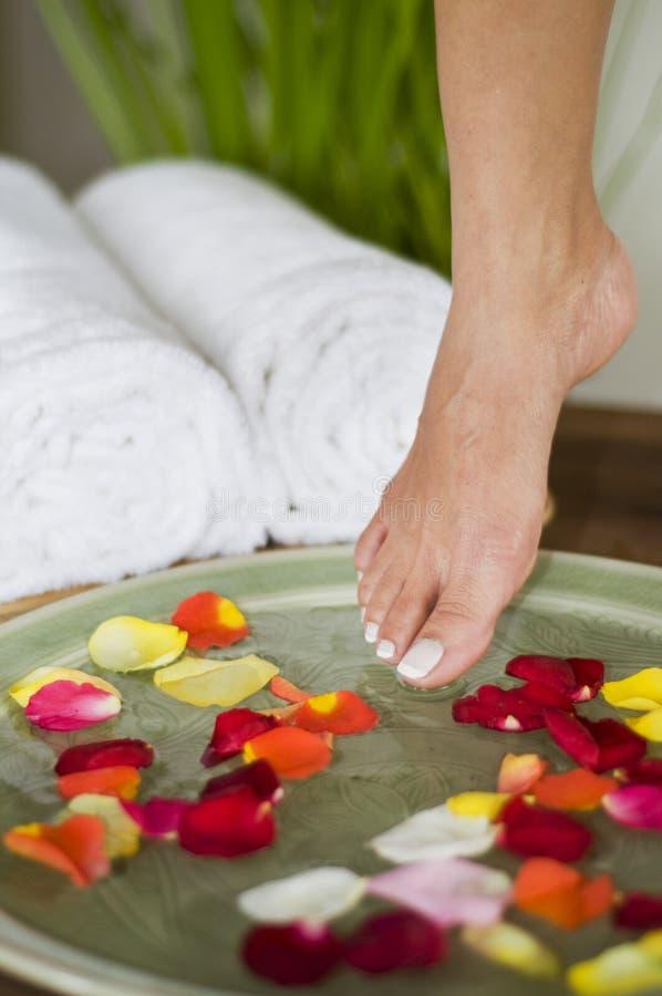 Termas aromatherapy de relaxamento para os pés 1 foto de stock royalty free