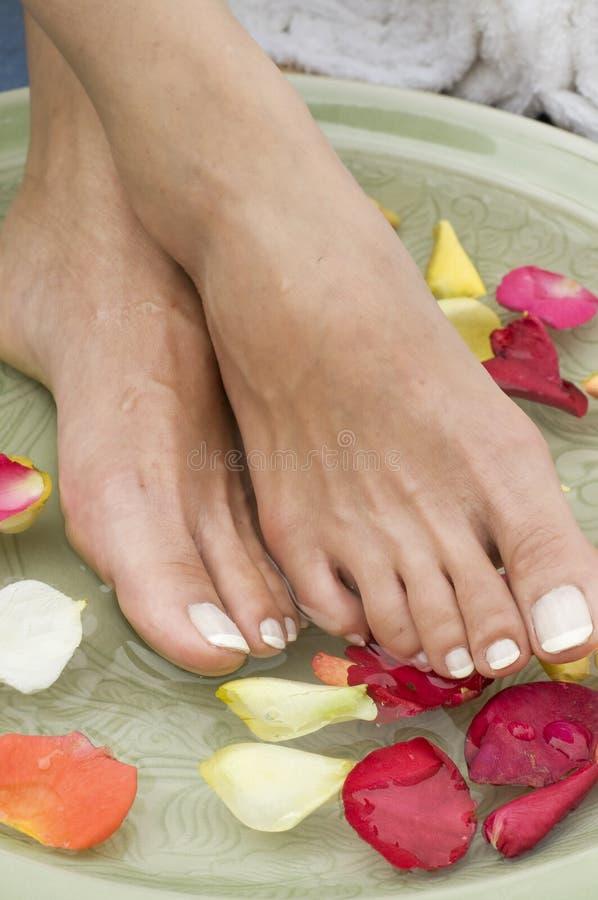 Termas aromatherapy de relaxamento para os pés 5 fotos de stock