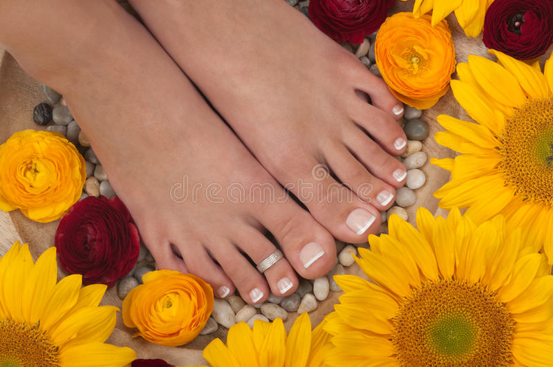 Termas de Pedicure fotografia de stock royalty free