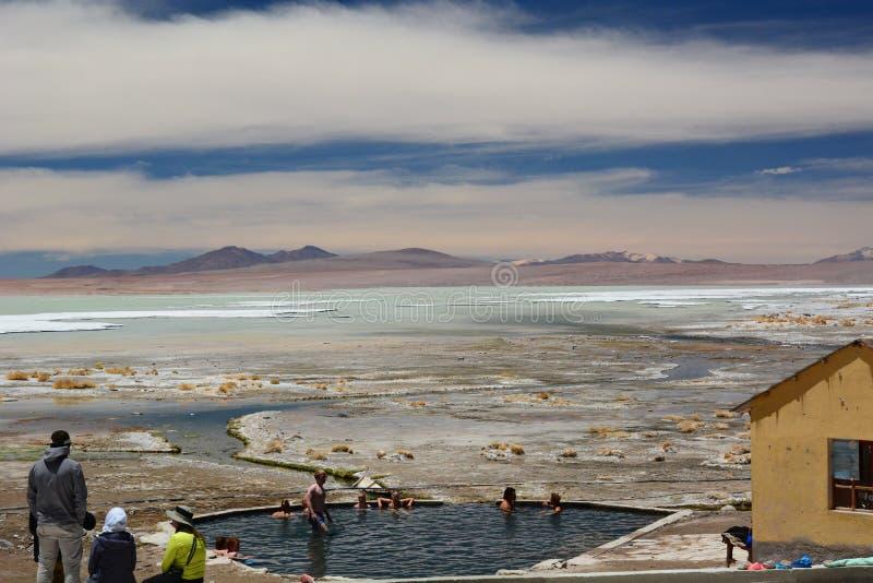 Termas de Polques Salar de Chalviri Réservation d'Eduardo Avaroa Andean Fauna National bolivia photos stock