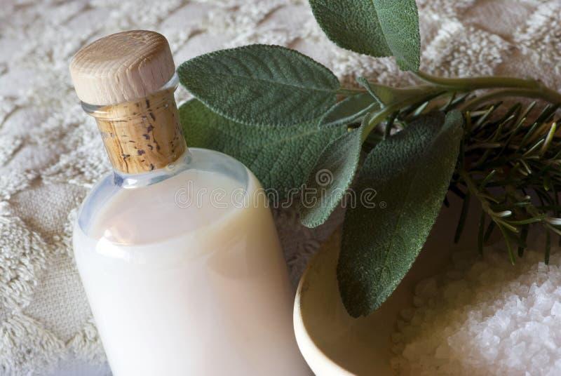 Termas do sábio e do rosemary ajustados - aromatherapy imagens de stock royalty free