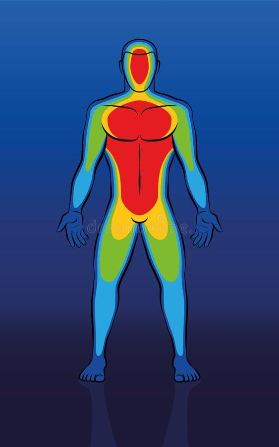 Termiczny wizerunku Męskiego ciała Frontowy widok ilustracja wektor