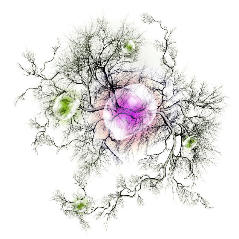 Terminaciones del nervio y nerviosas ilustración del vector