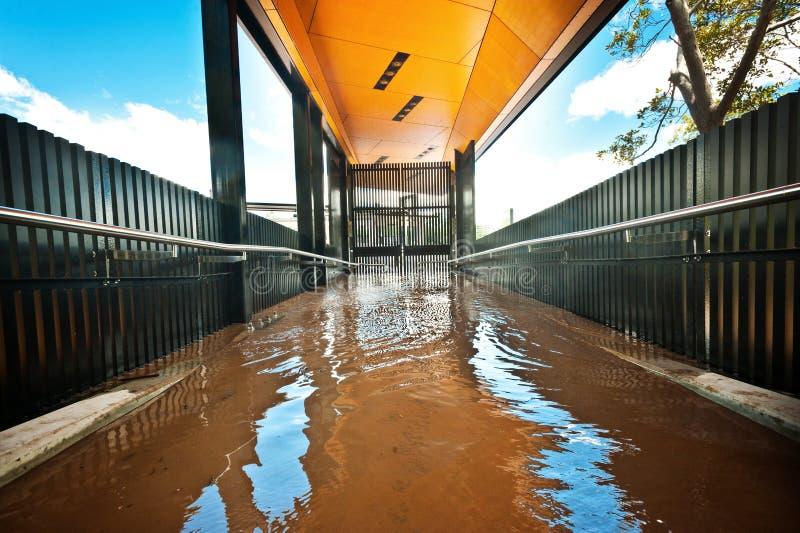 Terminal de balsa no West End, Brisbane imagem de stock