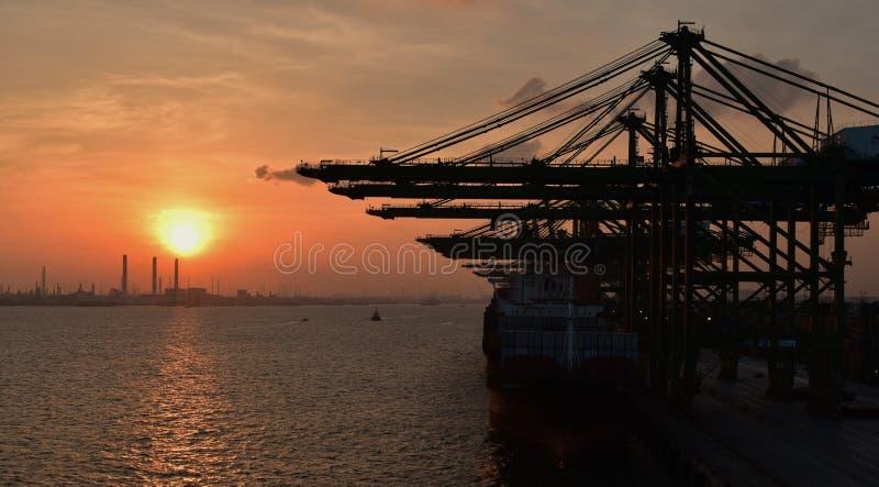 Terminal de récipient, grues de cargaison et grand complexe industriel au coucher du soleil photographie stock
