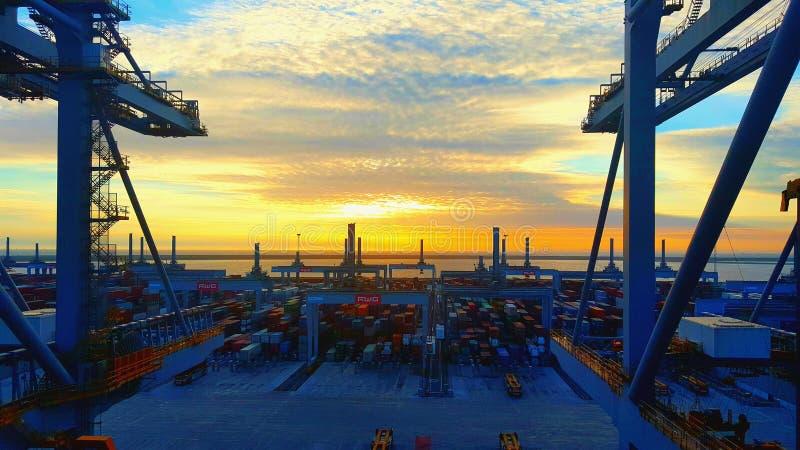 Terminal inteiramente automatizado de Países Baixos foto de stock royalty free