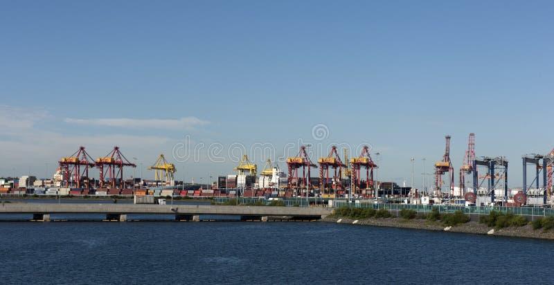 Terminale di container del carico di botanica del porto fotografia stock libera da diritti
