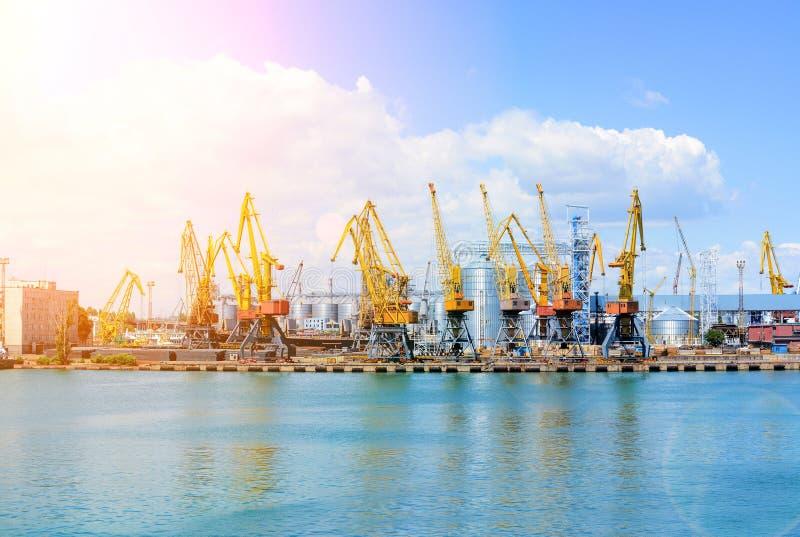 Terminale di contenitore del carico del porto di industriale dei trasporti via mare Gru del carico del porto sopra il fondo del c fotografia stock libera da diritti