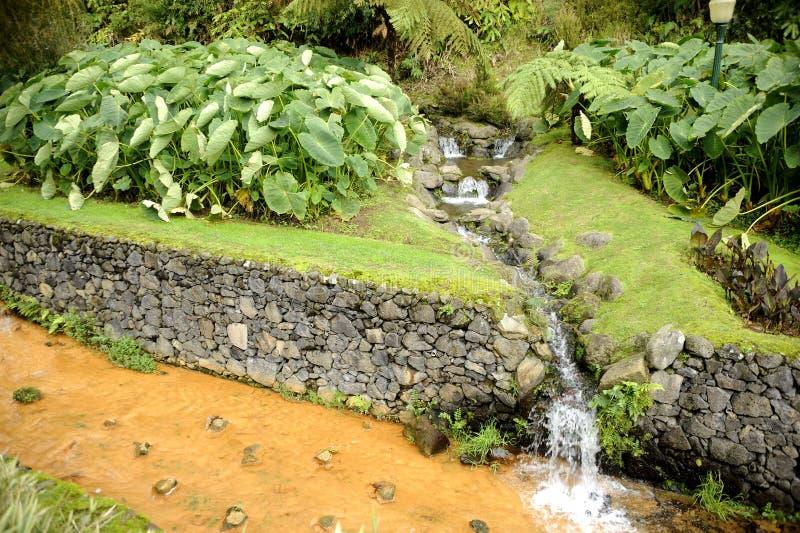 Termiskt vatten i Azoresna arkivfoton
