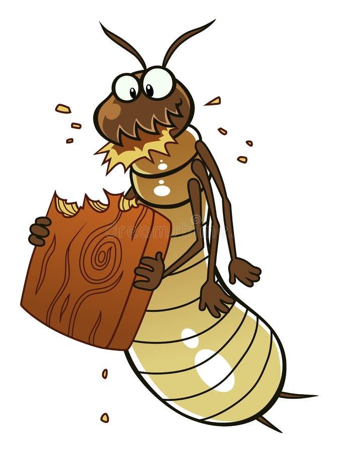 Termit äter trä stock illustrationer