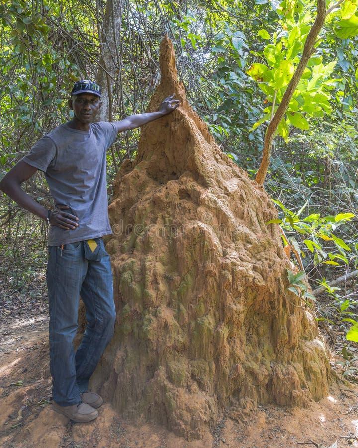 Termiten-Hügel und gambischer Mann lizenzfreie stockbilder