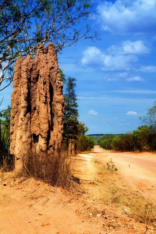 termitetorn royaltyfri bild