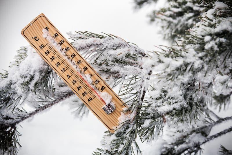 Termometer med den subzero temperaturen som klibbas i snön royaltyfria foton