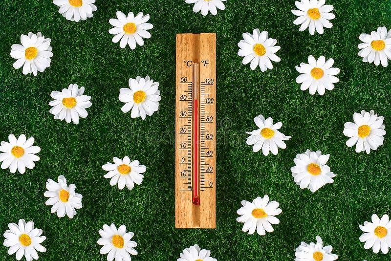 Termometr wystawia wysoko?? 40 stopni gor?ce temperatury w s?o?ce letnim dniu zdjęcia stock