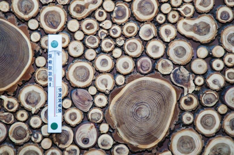 Termometro di legno calibrato nei gradi centigradi sulla parete di legno, fotografie stock libere da diritti