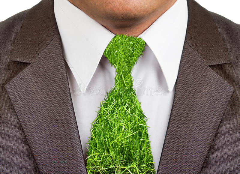 Terno formal do homem de negócios com laço da grama fotografia de stock