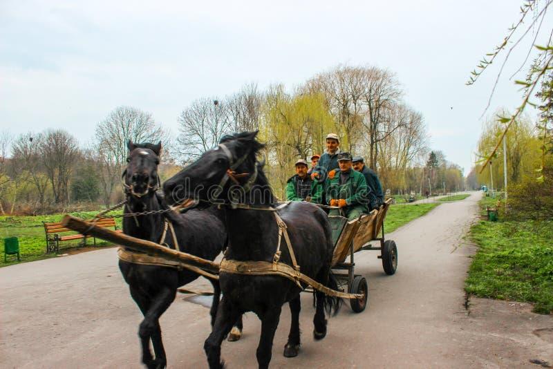 Ternopil, Ucraina - 08 aprile 2014: Gli operai della City Park si spostano a Ho fotografia stock