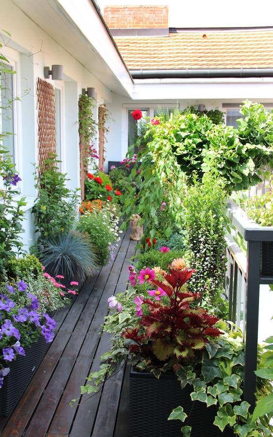 Terraço bonito da casa com muitas flores foto de stock royalty free