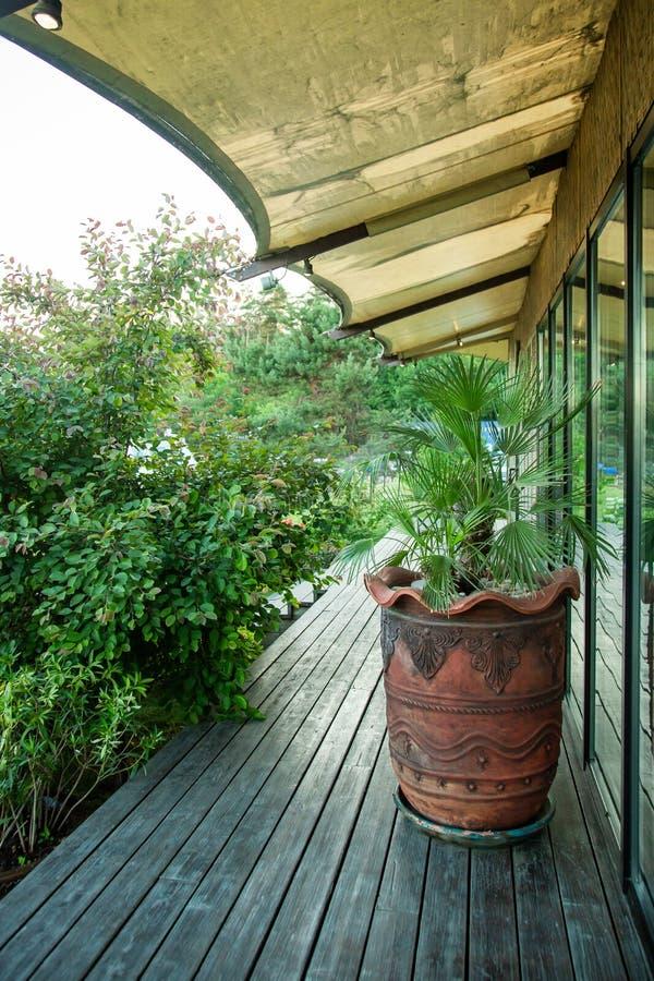 Terraço com as plantas no café do verão fotos de stock royalty free