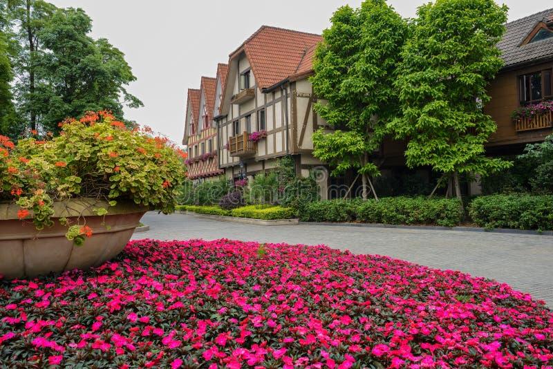 Terraço da flor antes das construções do Europeu-estilo fotografia de stock