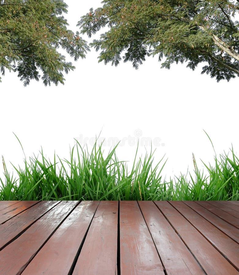 Terraço de madeira fotografia de stock royalty free
