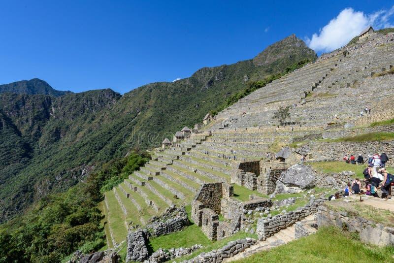 Terraços agrícolas em Machu Picchu fotografia de stock