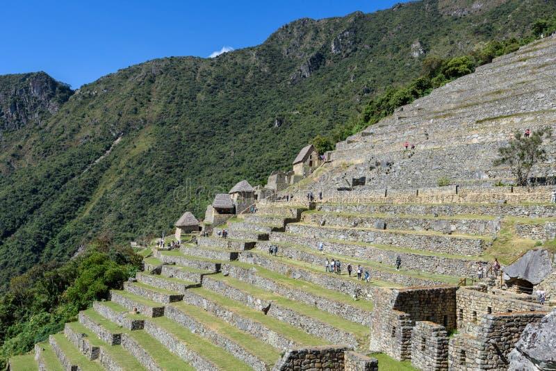 Terraços agrícolas em Machu Picchu imagem de stock royalty free