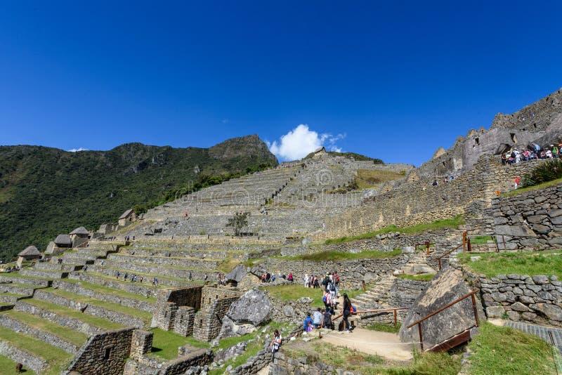 Terraços agrícolas em Machu Picchu fotografia de stock royalty free