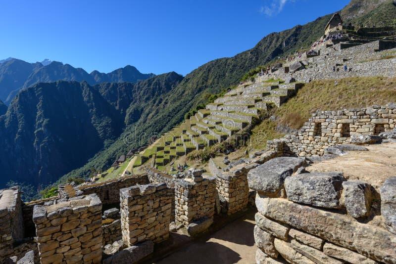 Terraços agrícolas em Machu Picchu foto de stock royalty free