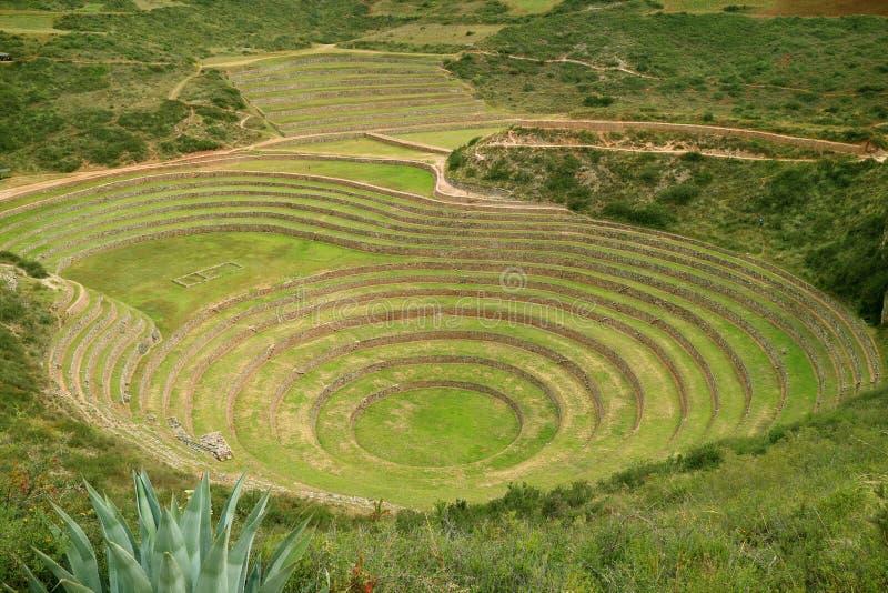Terraços agrícolas históricos do Moray no vale sagrado dos Incas, região de Cusco, Peru foto de stock