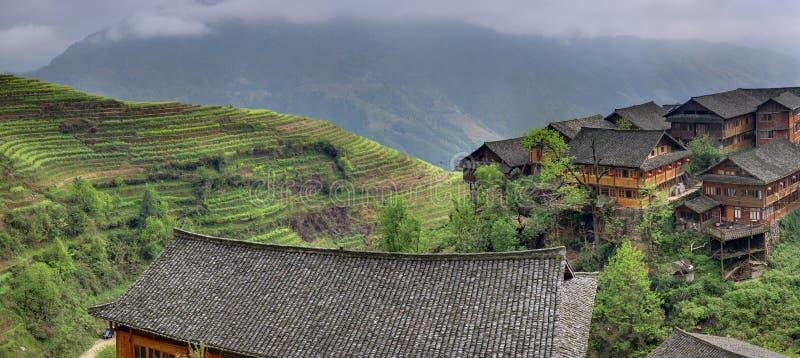Terraços asiáticos do arroz perto do ploughm chinês dos fazendeiros do camponês da vila imagens de stock