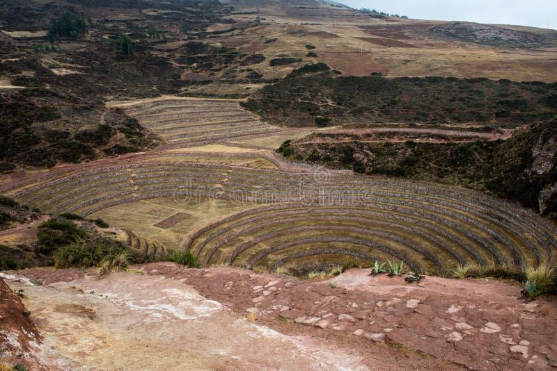 Terraços circulares da agricultura em Moray Peru fotografia de stock
