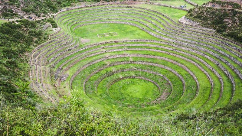 Terraços circulares do Inca antigo na estação agrícola da experiência do Moray, Peru foto de stock