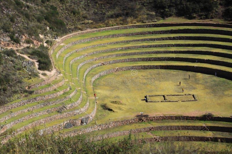 Terraços circulares do Inca antigo no Moray imagem de stock royalty free