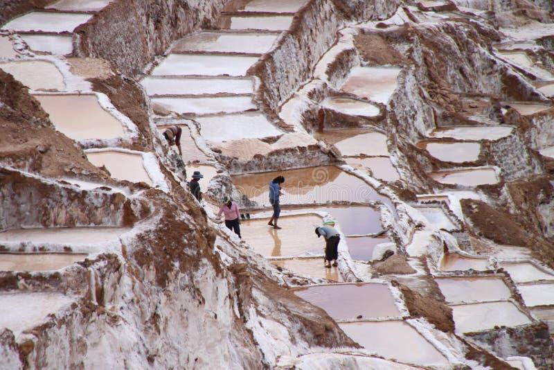 Terraços de sal do Moray, Peru fotos de stock