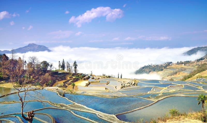 Terraços de Yuan Yang - herança natural do mundo imagem de stock